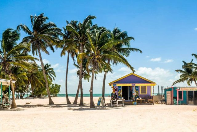 A beach in Belize with palm trees and colored shacks