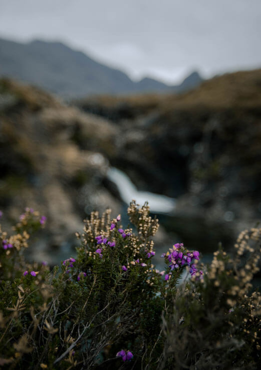 Heather in front of the Fairy Pools on the Isle of Skye.