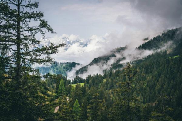 A mountainside in Liechtenstein, one of Europe's least touristy destinations.