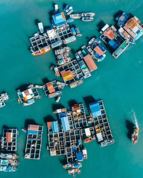 A photo by Jack Crosby of an aerial view of boats in Halong Bay