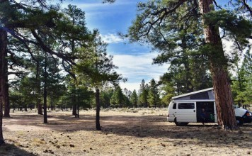 a white van in the middle of a forest