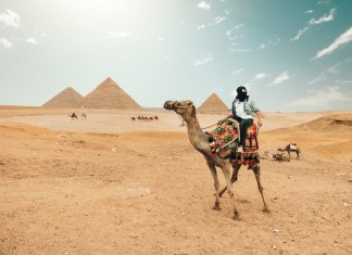 is it safe to travel to egypt spencer davis
