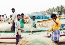 south india daniel volland