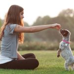Puppy Training 101 Your Guide To Basic Puppy Training