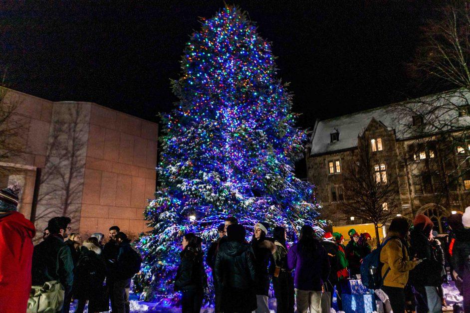 Tree Lighting Kicks Off Holiday Season