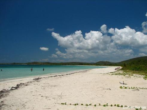 Image result for playa chiva vieques