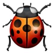 Lady Beetle Emoji (U+1F41E)