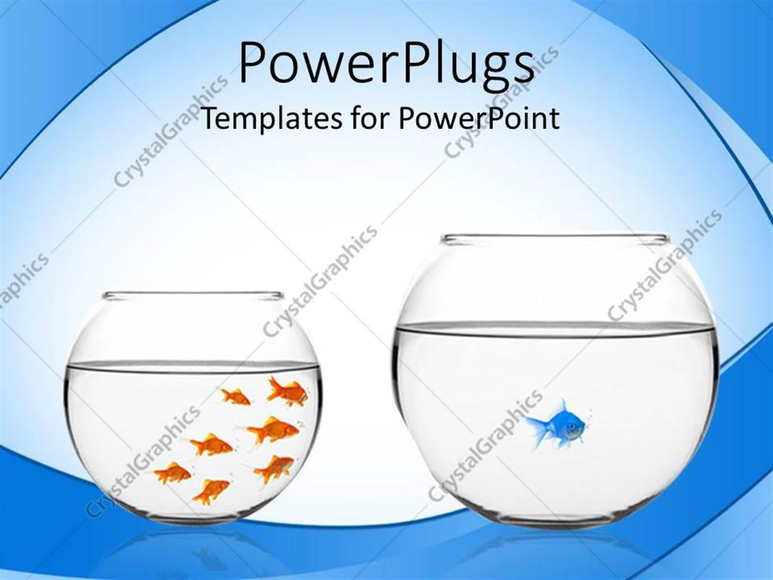 Powerpoint Template Fish Bowl With One Blue Fish And Bowl With Seven Golden Fish 24450