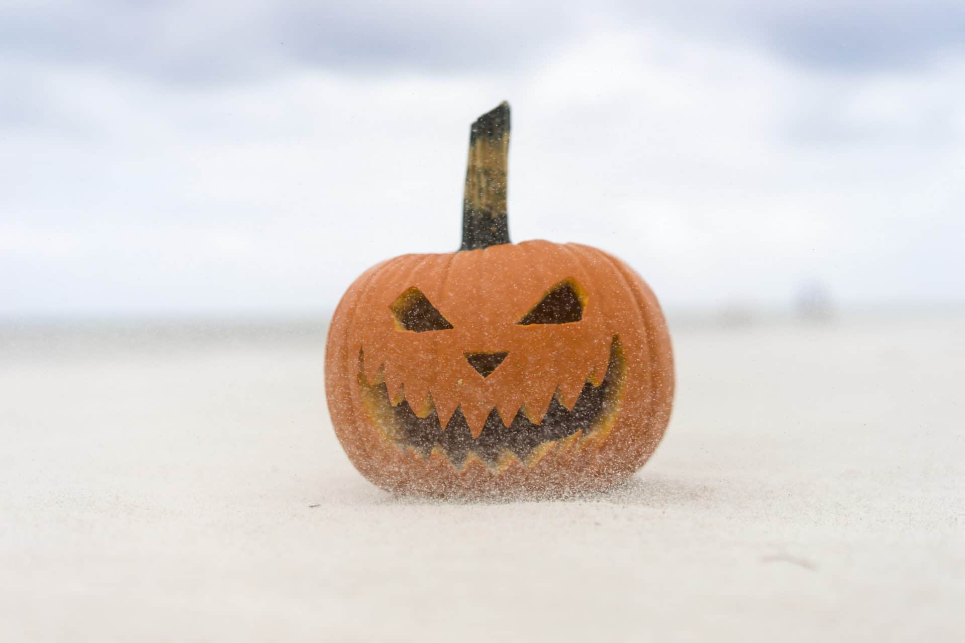 Image of pumpkin for Weekly Webinar Investor Horror Stories (and What We Can Learn From Them)