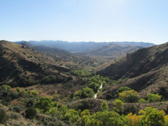 The Gila River in southwestern New Mexico, downstream from Bill Evans Reservoir.