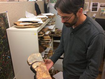 Elllis Margolis showing off some tree rings