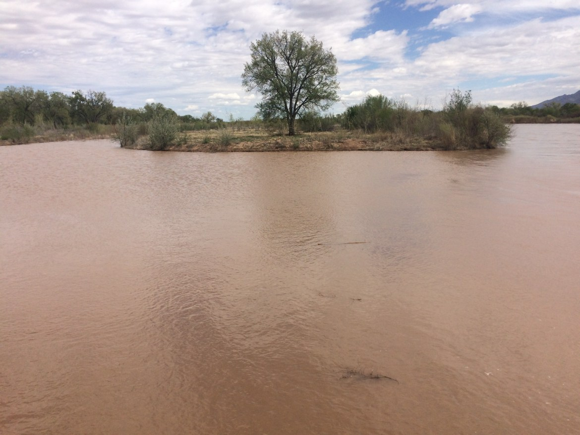 Rio Grande roars to life with runoff | The NM Political Report