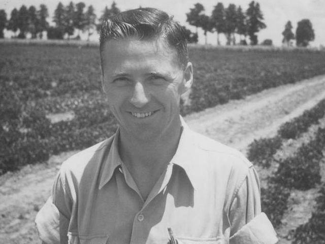 Norman Borlaug The Man Who Made Wheat Growing A Miracle-పంజాబీల దైవం బోర్లాగ్