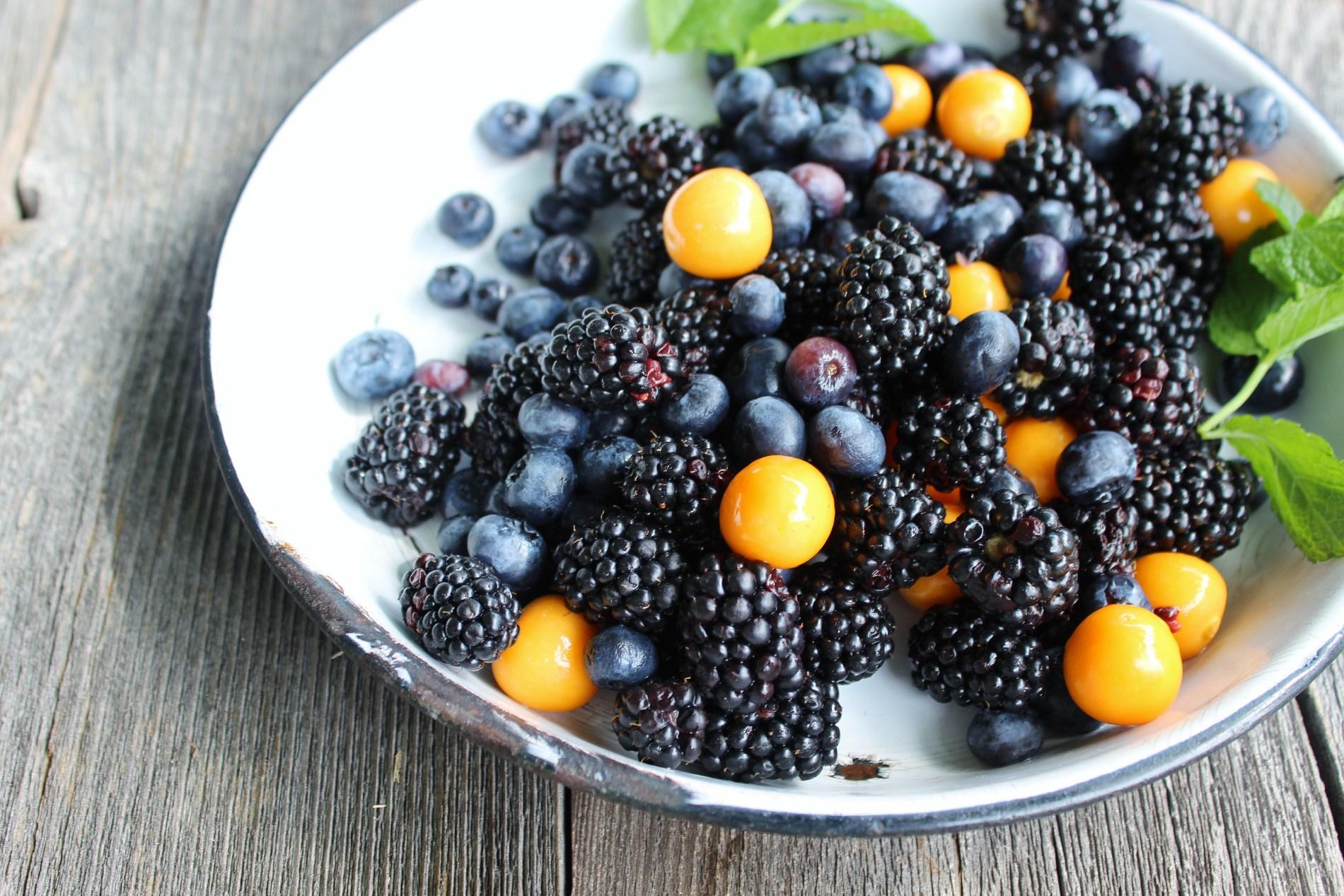 Wildberry Tarts
