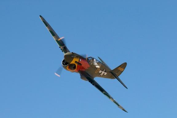 John-Curtiss Paul's Parrothead P-40N