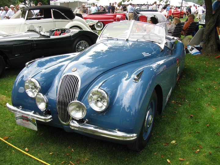 greenwich-concours-foreign-cars-23
