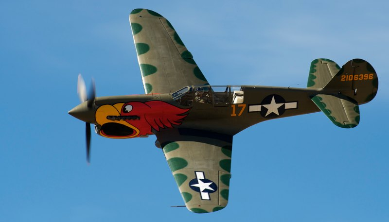 Unlimited. P-40N, 'Parrothead'. John Curtiss Paul.