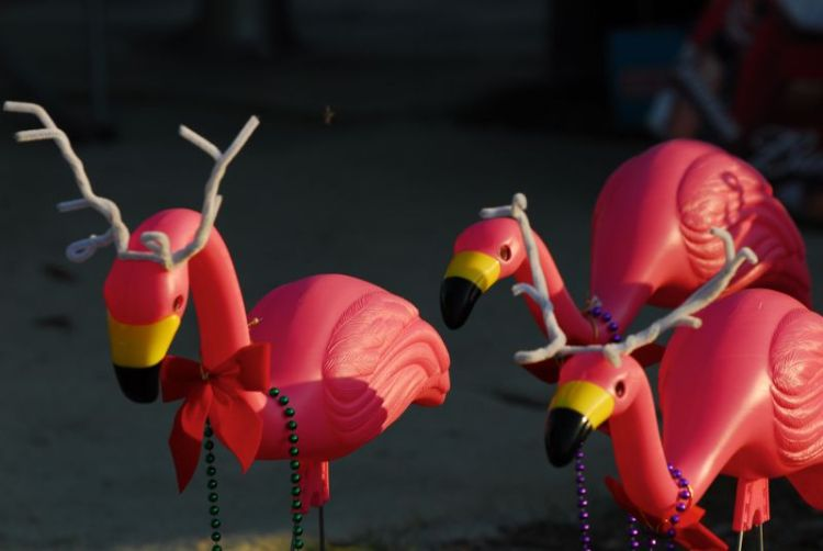 Flamingo Reindeer