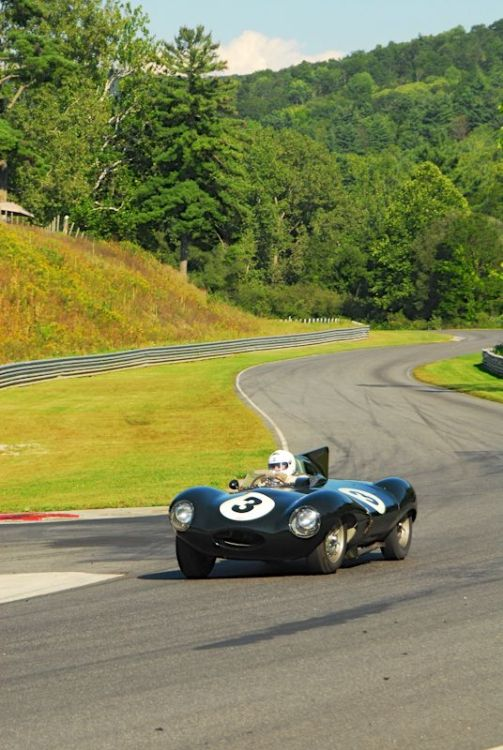 1955 Jaguar D Type- Daniel Ghose.