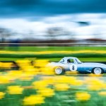 Goodwood Members Meeting 2017 – Report and Photos