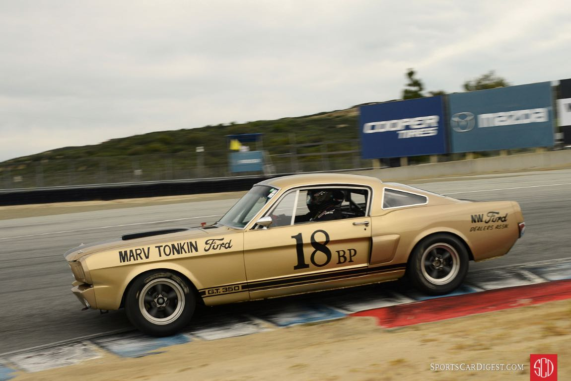 Jim Reed - 1966 Shelby GT 350