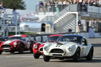 AC Cobra Race at Goodwood Revival