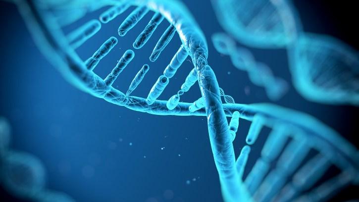 「DNA」の画像検索結果