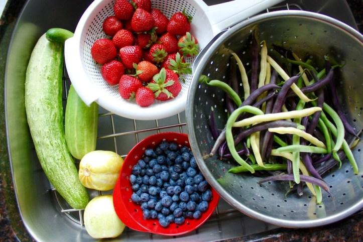 vegetable, berry