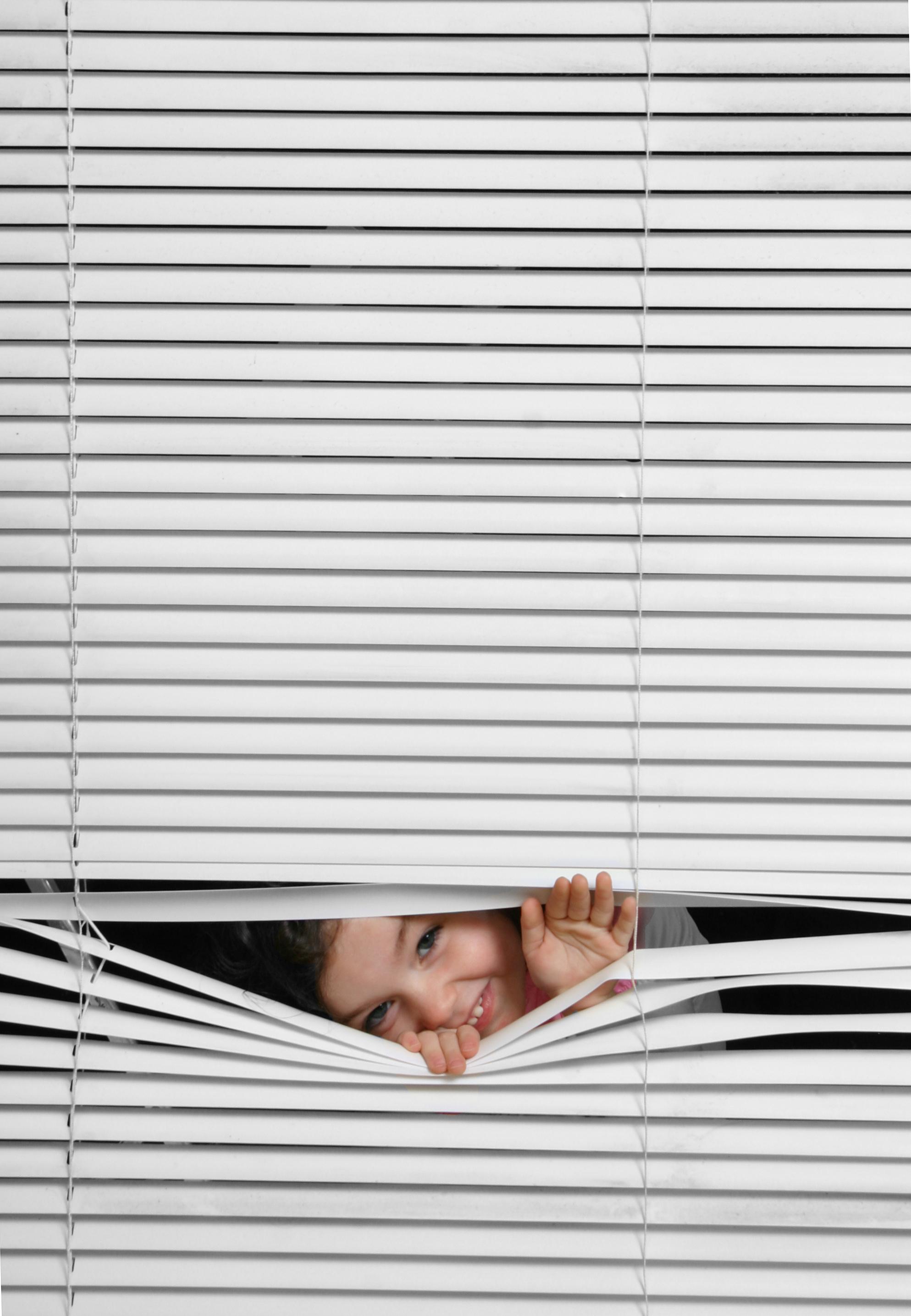 custom-mini-blinds-gallery-of-shades.jpg
