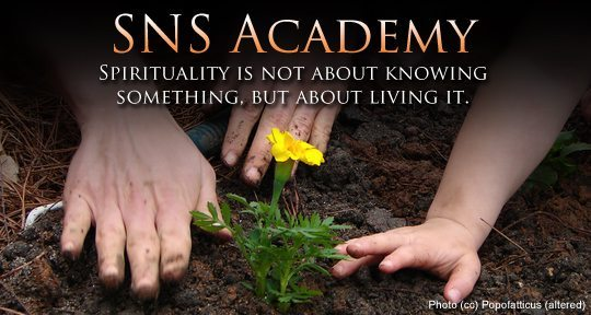 sns-academy-banner