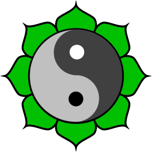 Introduction to Bodhidaoism