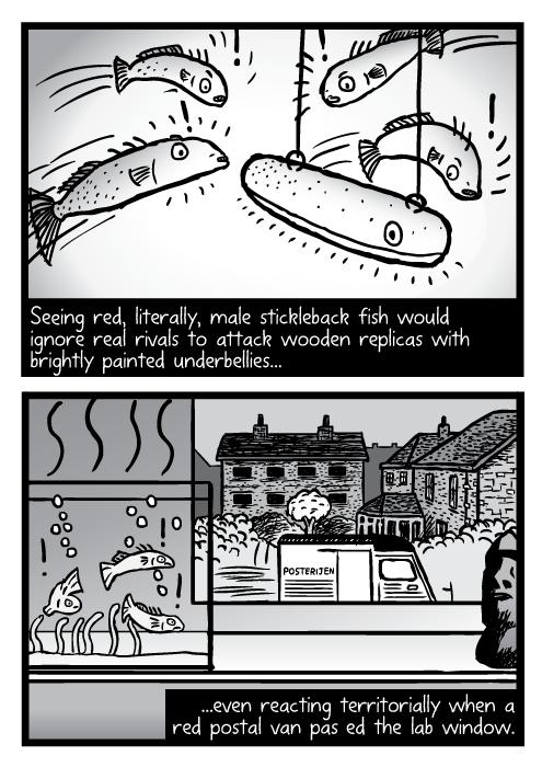 Supernormal stimuli comic - part 8