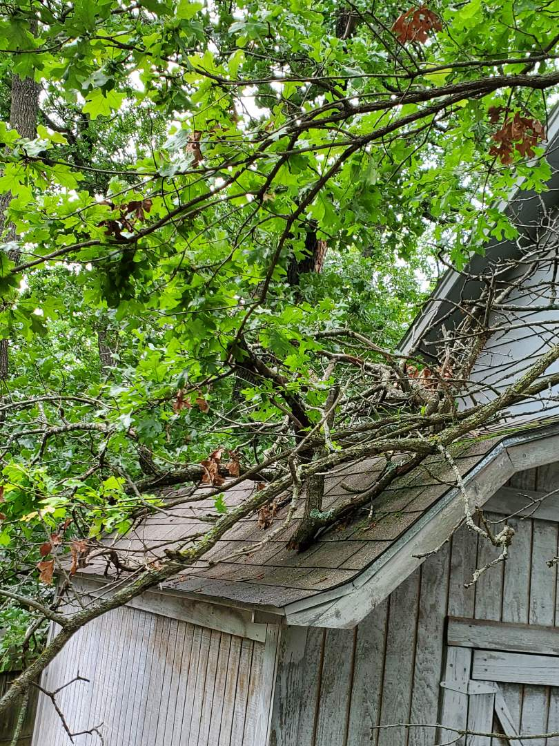 Sand Springs, OK - Inspection for roof damage. Tree fell onto the roof. Hail storm was in the area recently.