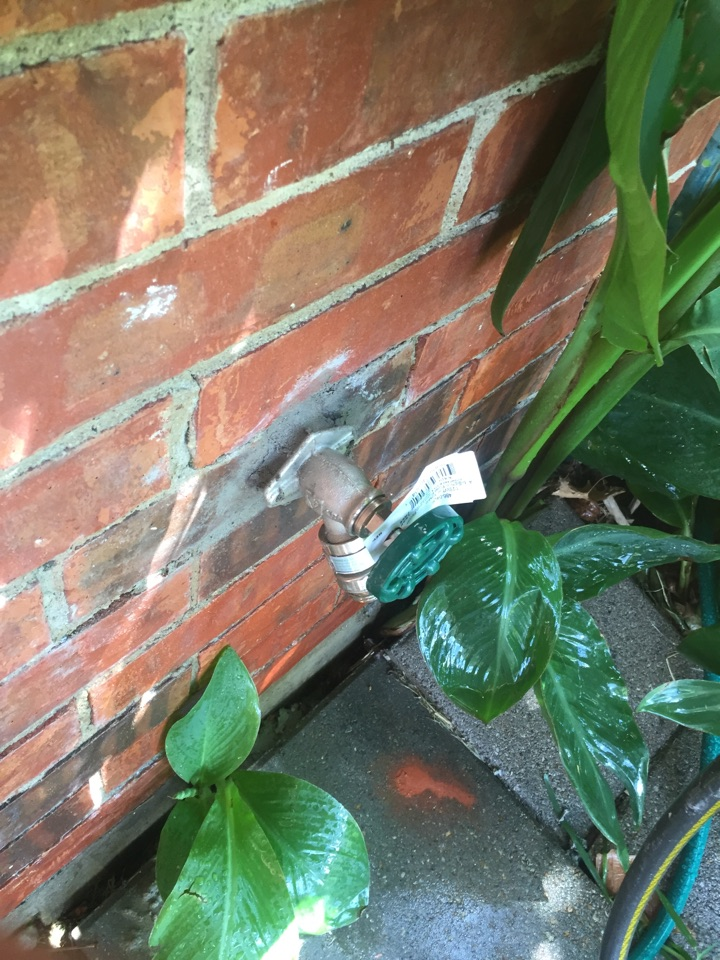 Mesquite, TX - Frostproof in backyard looking in wall.  Install new frostproof. Mesquite plumbers. Mesquite outside faucet leaking repair and replacement.
