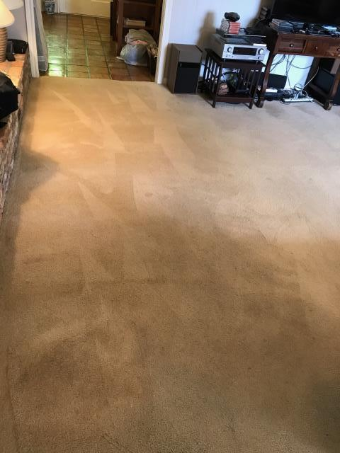Baton Rouge, LA - Spot Removal on carpet!