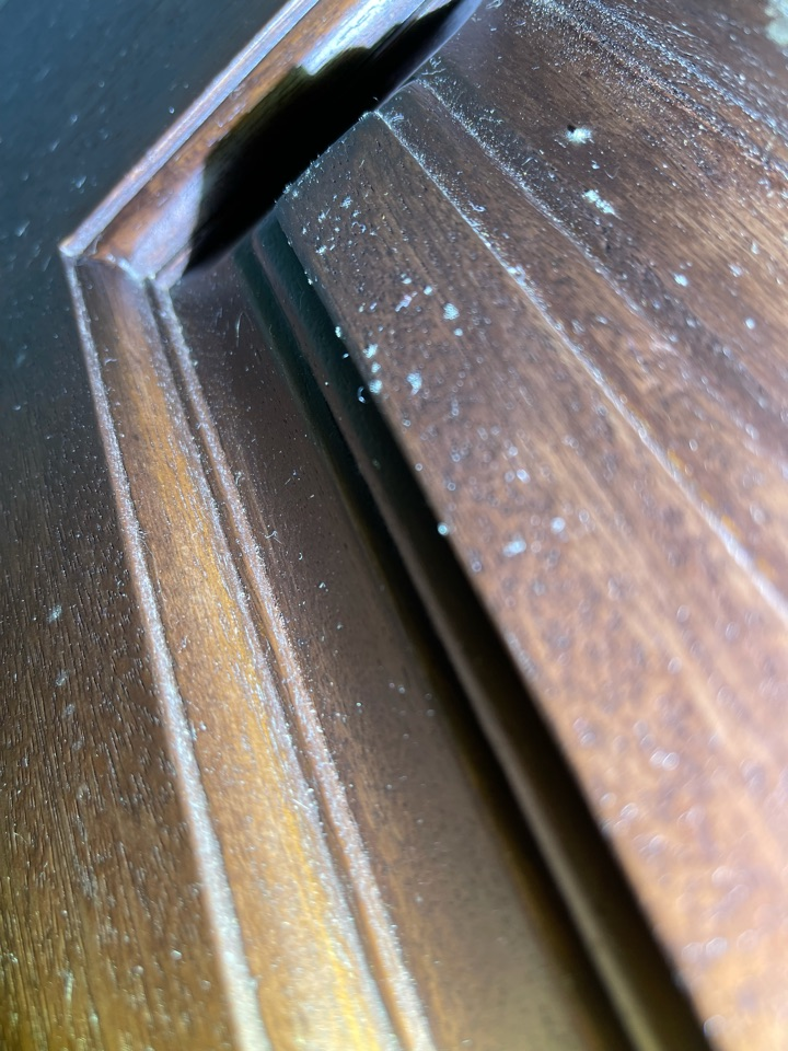 Miami, FL - Dealing with mold growth secondary damage throughout the guest house. Damage is caused by defective air conditioning with the contribution of old doors and windows.