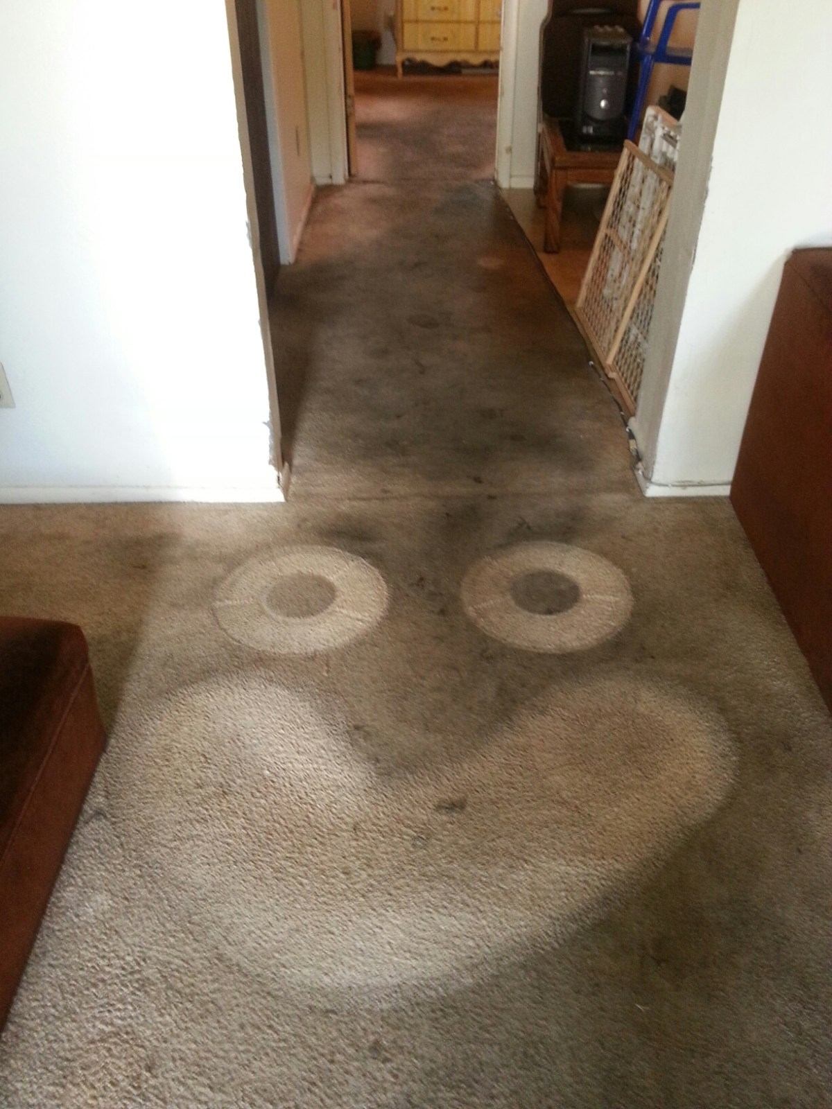 Provo, UT - Carpet cleaning in Provo.  Living room hall and bedroom.  Carpet really needed replacment but salvaged what we could