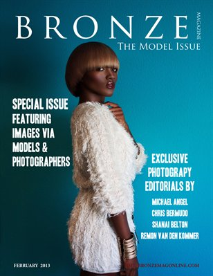The Model Issue