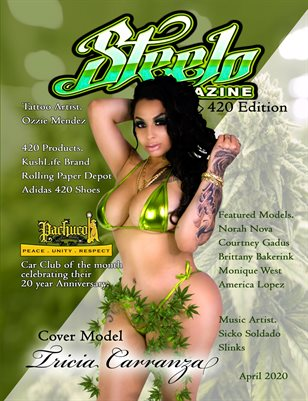 Steelo Magazine - 420 issue