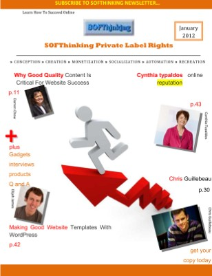 SOFThinking Newsletter