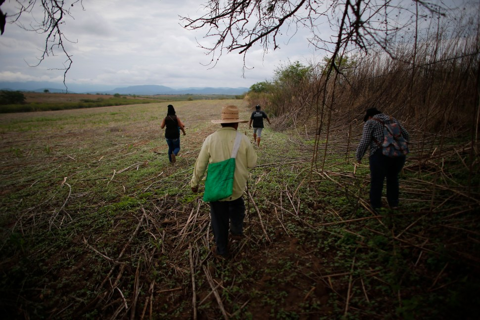 In this May 31, 2015 photo, a group of relatives of missing people walk in a field as they search in vain for a site of a possible clandestine grave after they received an anonymous tip, in Iguala, Mexico. Since the government began excavating suspected graves found by this group scouring the surrounding mountains looking for their loved ones late last year, more than 100 bodies have been exhumed though most still await identification. (AP Photo/Dario Lopez-Mills)