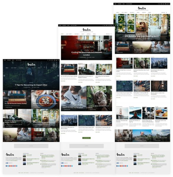 image: Amelia WordPress Theme Layouts