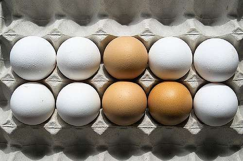 Eggs Are The Latest Food Item To Be Recalled For Suspected