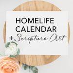 Family Time Calendar | August 2017