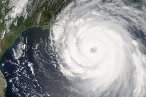 Katrina: The Impacts