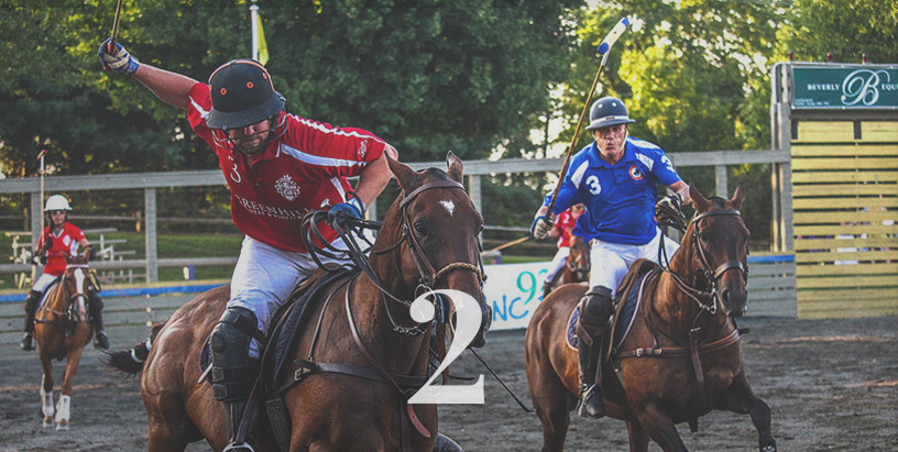 Twilight Polo
