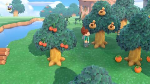 お金の木 育たない あつ森 【あつ森】かねのなる木の作り方と金額【あつまれどうぶつの森】|ゲームエイト