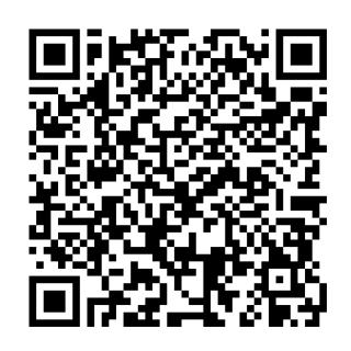 サンムーン ガブリアスのqrコード ポケモンsm 攻略大百科