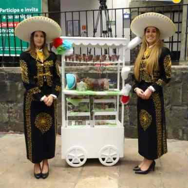 mariachi picot