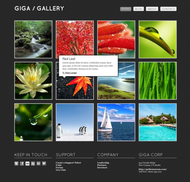 Free Image Gallery Html Template | secondtofirst.com